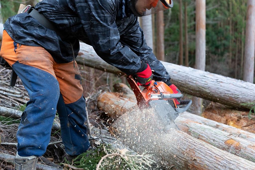 造材 林業 伐採 高知